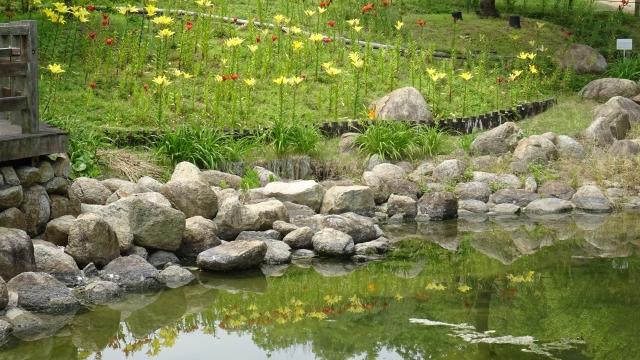 国営明石海峡公園22.JPG