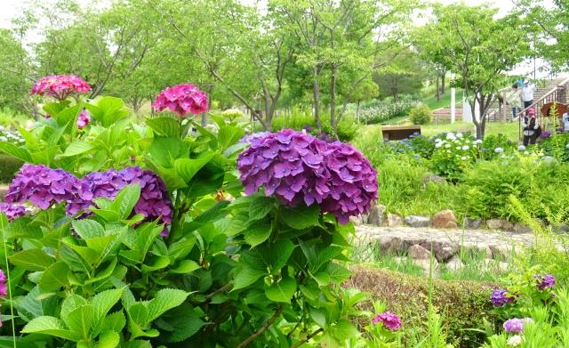 国営明石海峡公園23.JPG