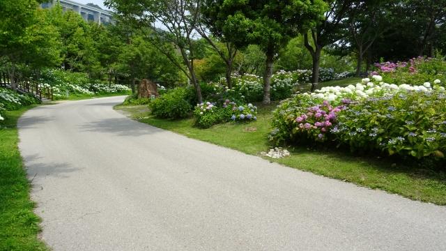 国営明石海峡公園27.JPG