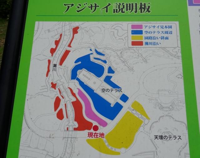 国営明石海峡公園29.JPG
