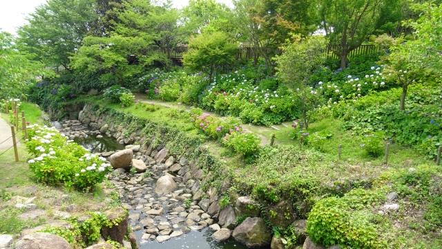 国営明石海峡公園30.JPG