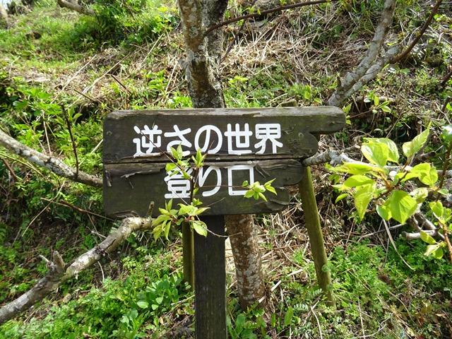 堺バス停23.jpg