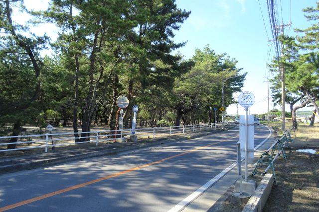 慶野1.JPG