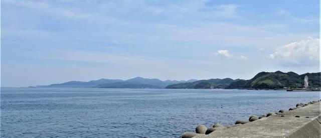 柏原山31.JPG