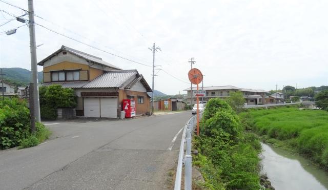 柏原山5.JPG