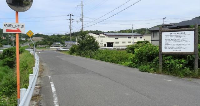 柏原山6.JPG
