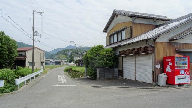 柏原山7.JPG