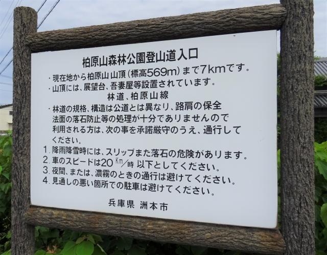 柏原山8.JPG