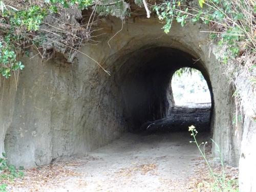 素掘りトンネル5.JPG