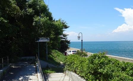 緑の道しるべ江崎公園12.jpg